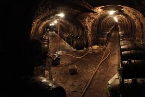 Vinařská oblast Tokaj, památka UNESCO / DF